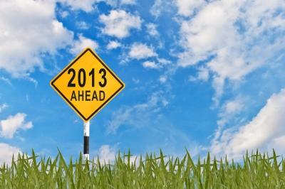 2013 financial goals